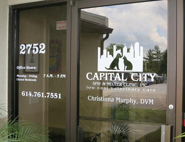 Lettering Window Graphics Next Day Signs - Window decals for office doors
