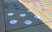 Sidewalk Sport Decals