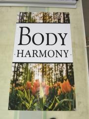 Body Harmony Banner