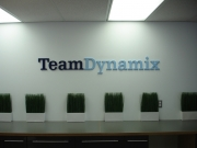 Team Dynamix Dimensional Lettering