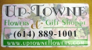 Up Towne Vehicle Magnet