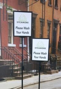 Sycamore Wash Hands