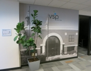 VSP Wall Graphic