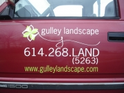 Gulley Landscape